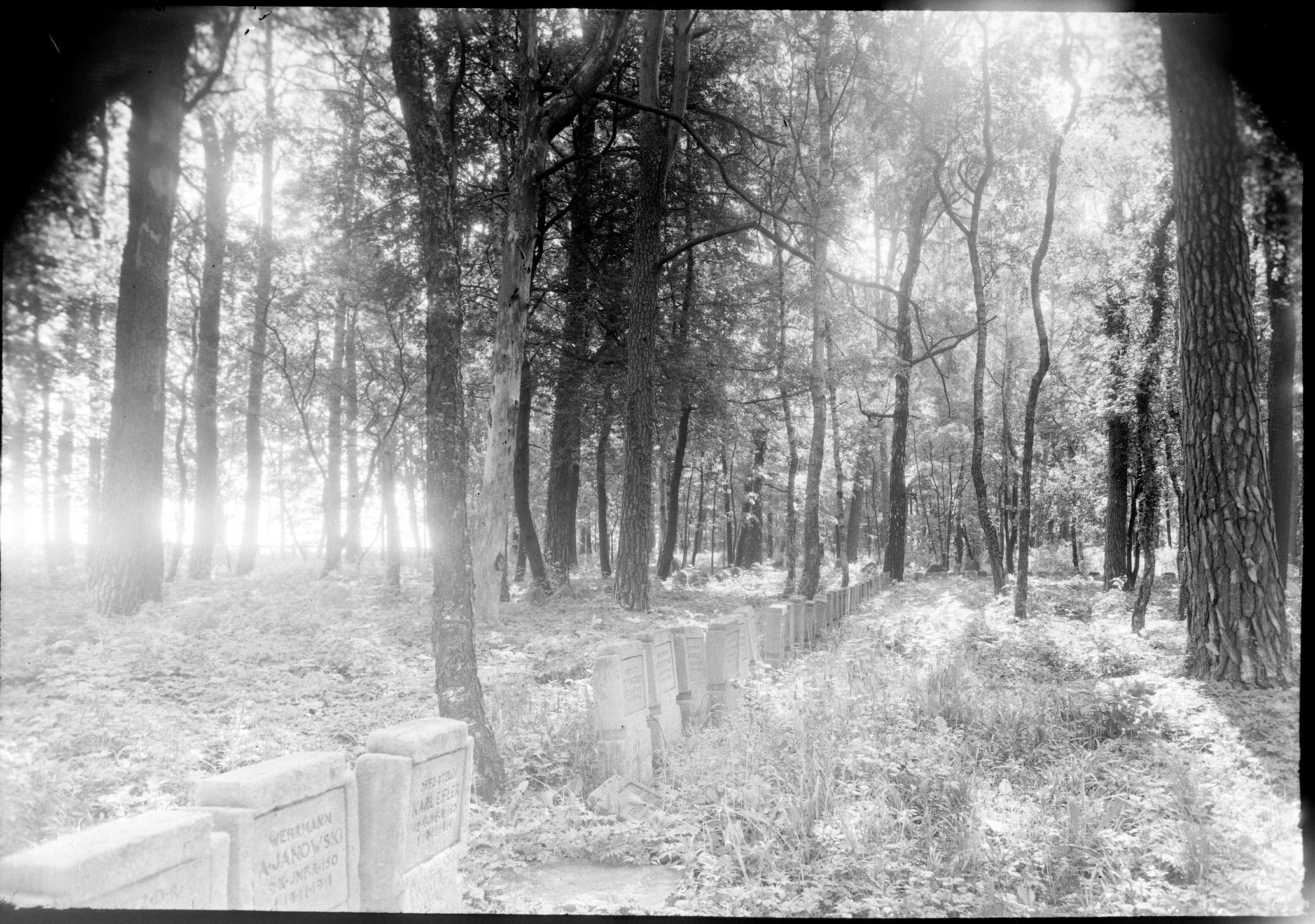 Soldatenfriedhof bei Brzeziny